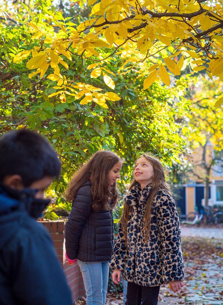 Kinder unter Herbstbäumen